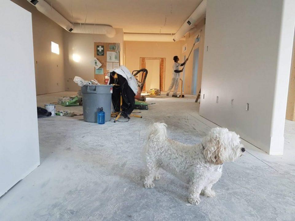 Sanierung - Wann lohnt sich die Haussanierung - immobilien und projektentwicklung hardy fuß frechen